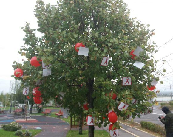 Pomul cu povesti din Galati!